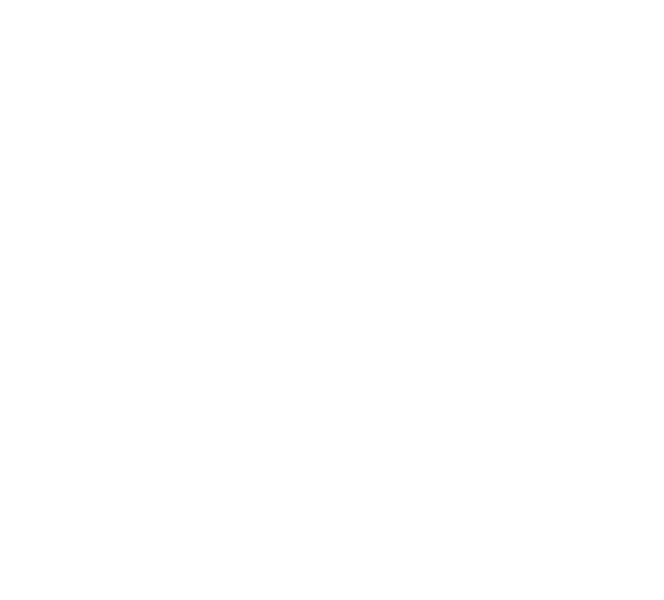 Monday's Sky Forecast For Placerville, CA is Rain